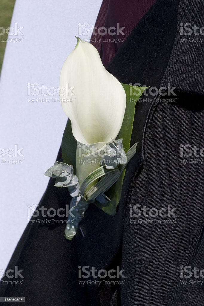 Close Up of White Flower Boutonniere on Formal Black Tuxedo stock photo