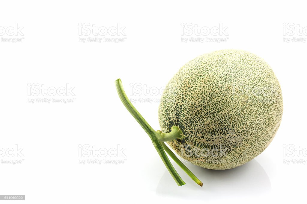 Close up of whole cantaloupe fruit. Green melon. stock photo