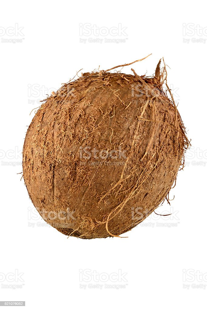 Close up of whole coconut with clipping path. stock photo