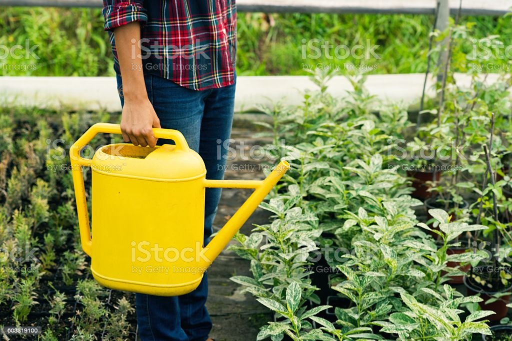 Close up of woman hand holding watering can. stock photo