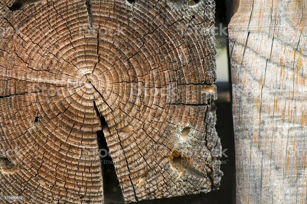 Close up of wooden house's trunk royalty-free stock photo