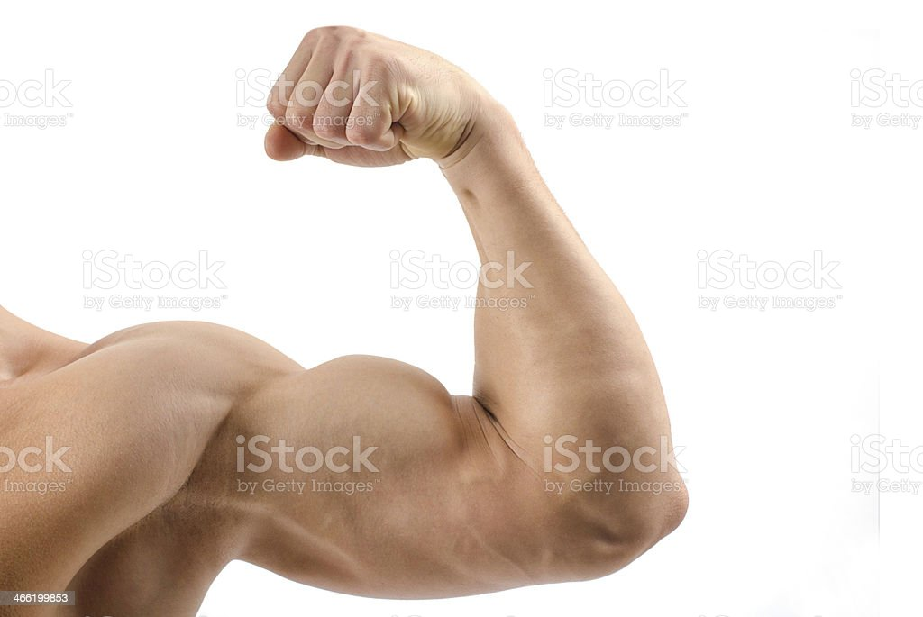 Close up on a bodybuilder biceps,shoulder stock photo