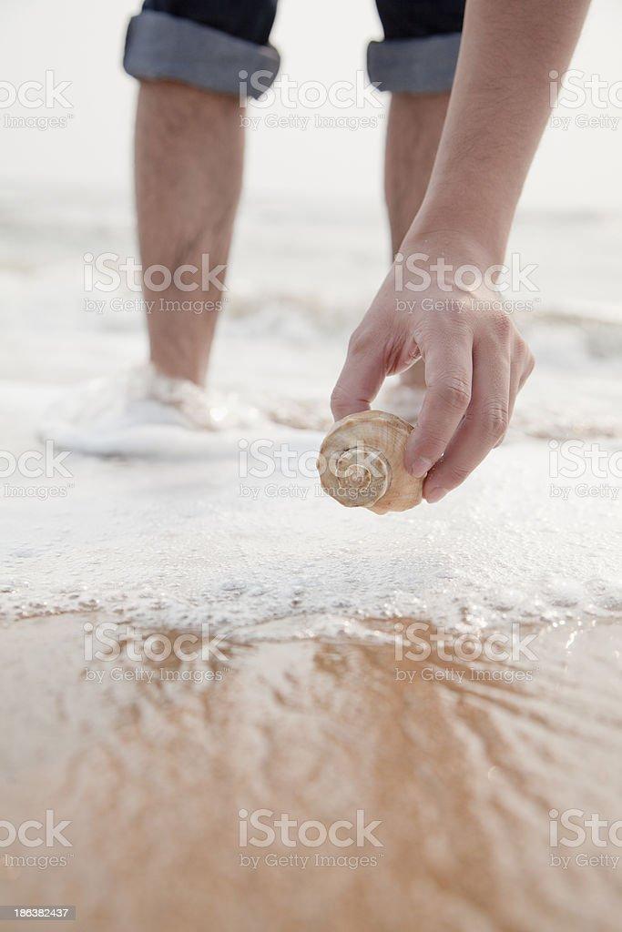 Close up on hand holding seashell royalty-free stock photo