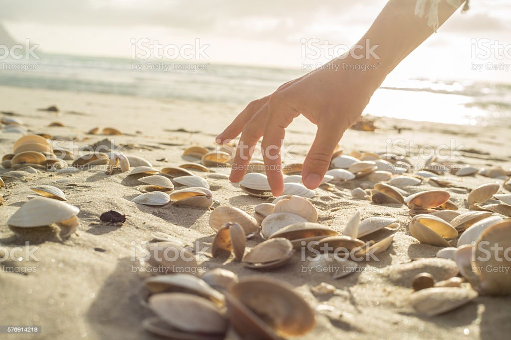 Close up on woman's hand picking up seashells from beach stock photo