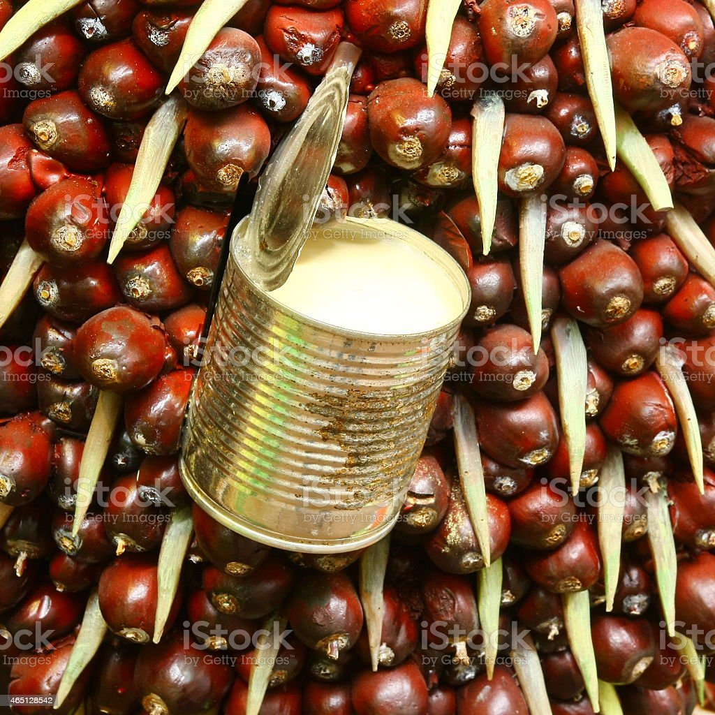 close up palm seed and product stock photo