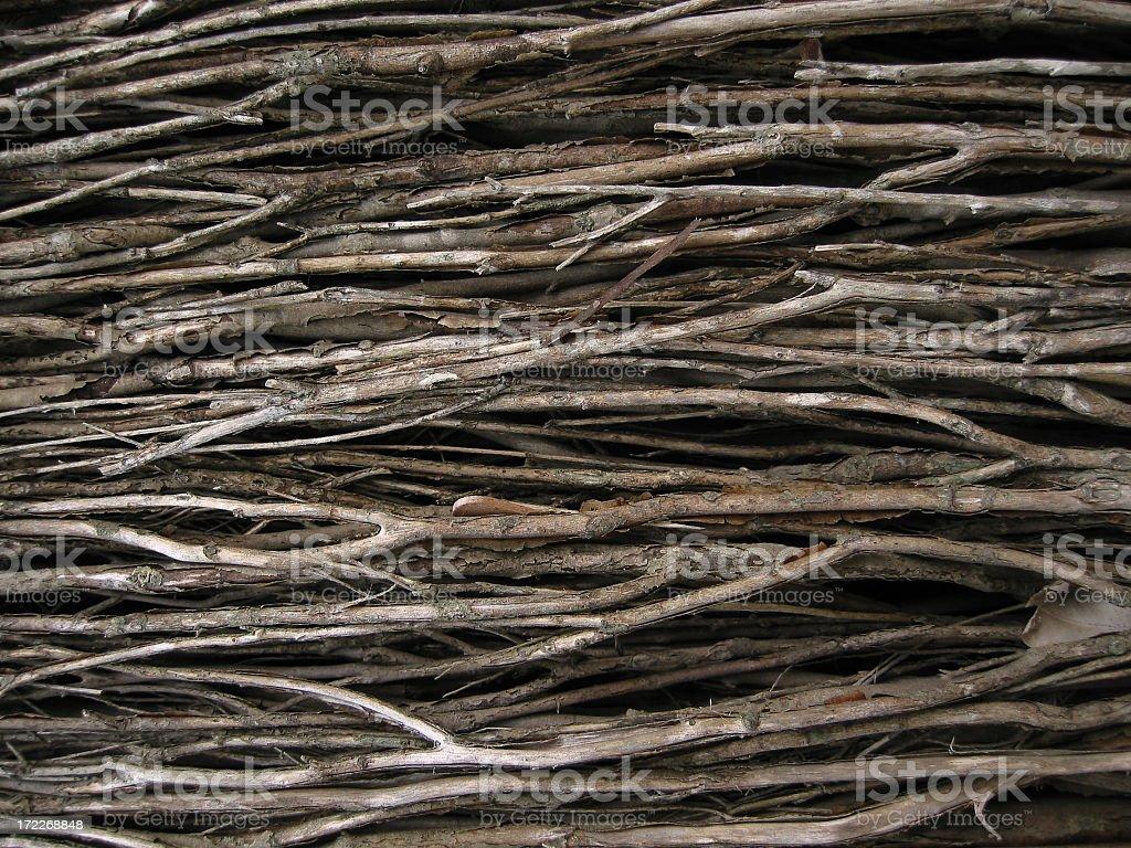 Close up photograph of some dried, thin, brown twigs royalty-free stock photo