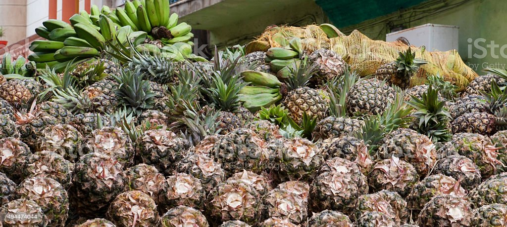 Close up Pineapple in the truck stock photo