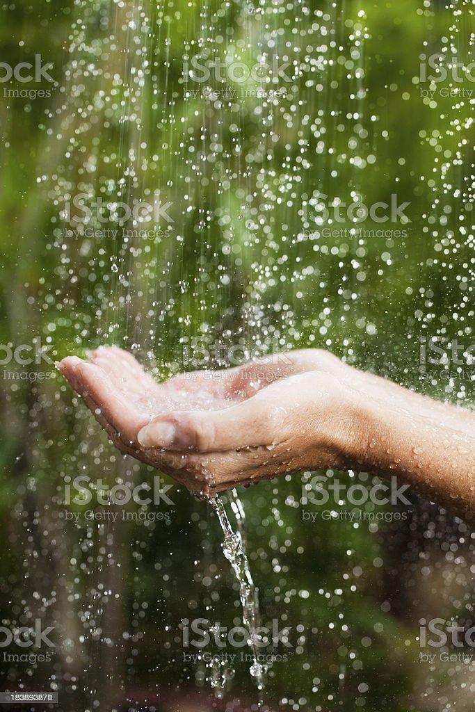 Close up portrait, hands on tropical rain. stock photo