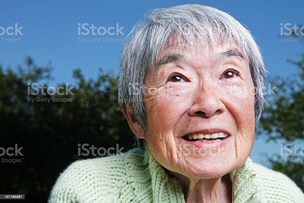 Close Up Portrait of an Elderly Japanese Grandmother royalty-free stock photo