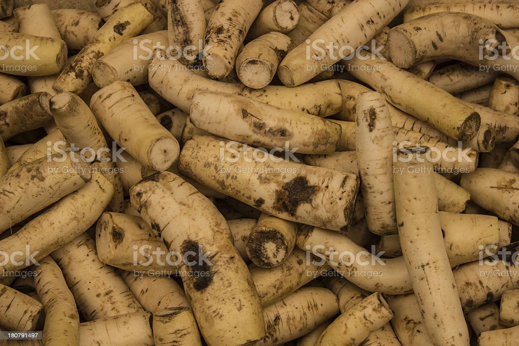 Close up Radishes royalty-free stock photo