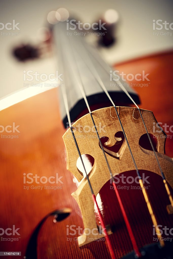 Close up shot of cello bridge stock photo