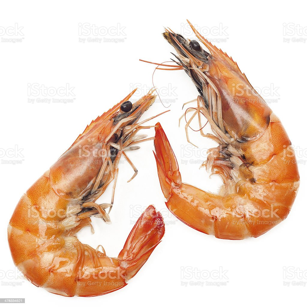 Close up shrimp isolated on white background stock photo