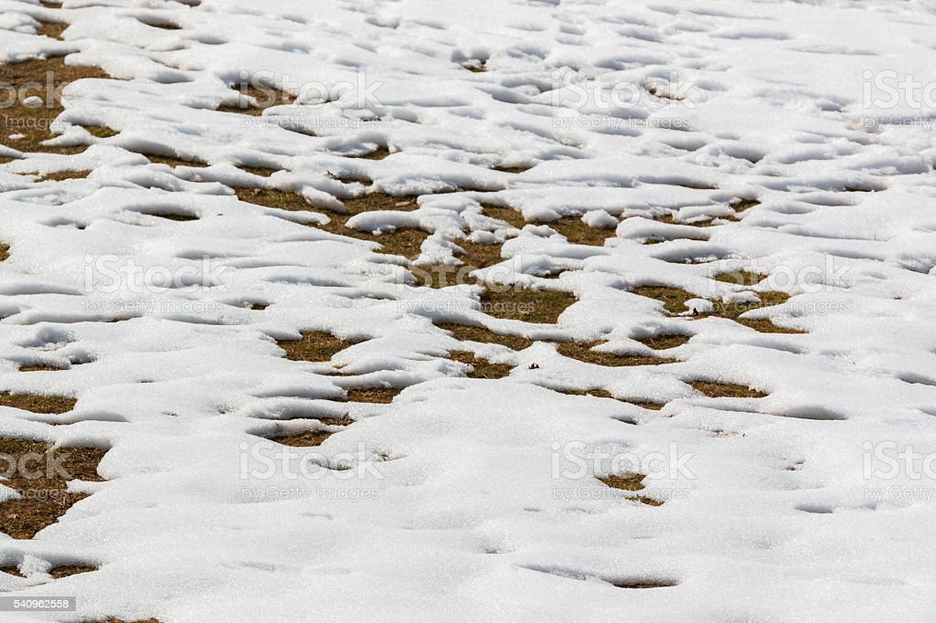 close up snow texture thawing snow. stock photo