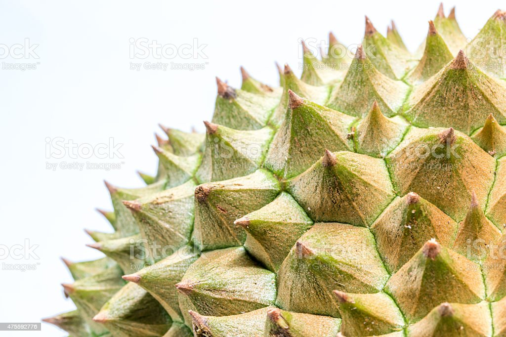 Close up to Thorns of durian stock photo