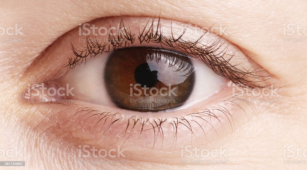 Close up view of a brown woman eye stock photo