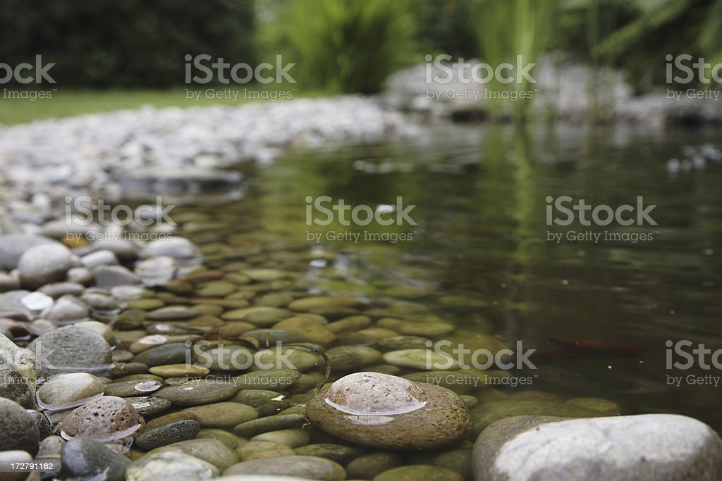 Close up view of a pond in a garden with rocks stock photo