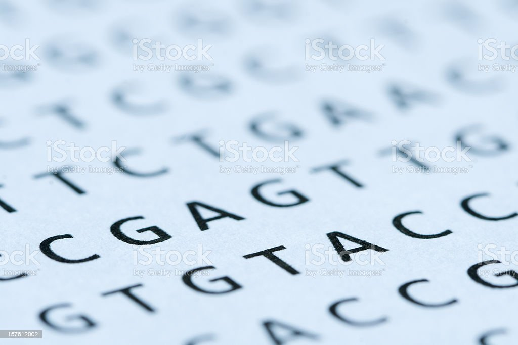 Close up view of DNA nucleotide sequence printout stock photo