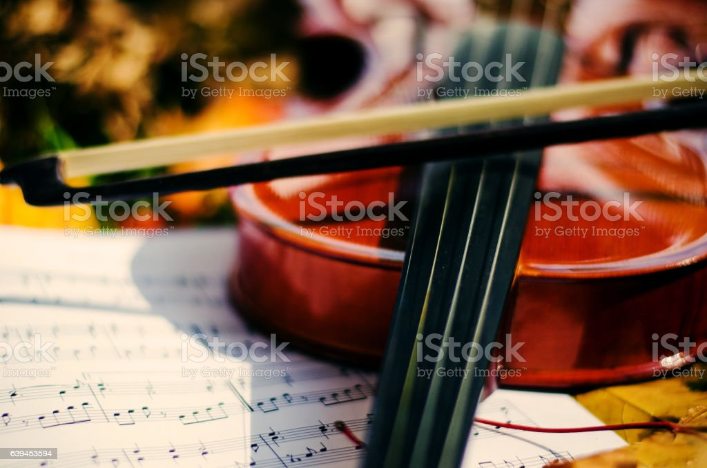 Close up violin and notes on ground stock photo