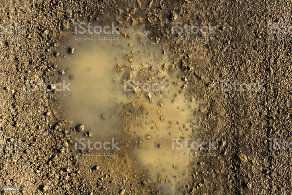 Close up wet country road in a spring stock photo