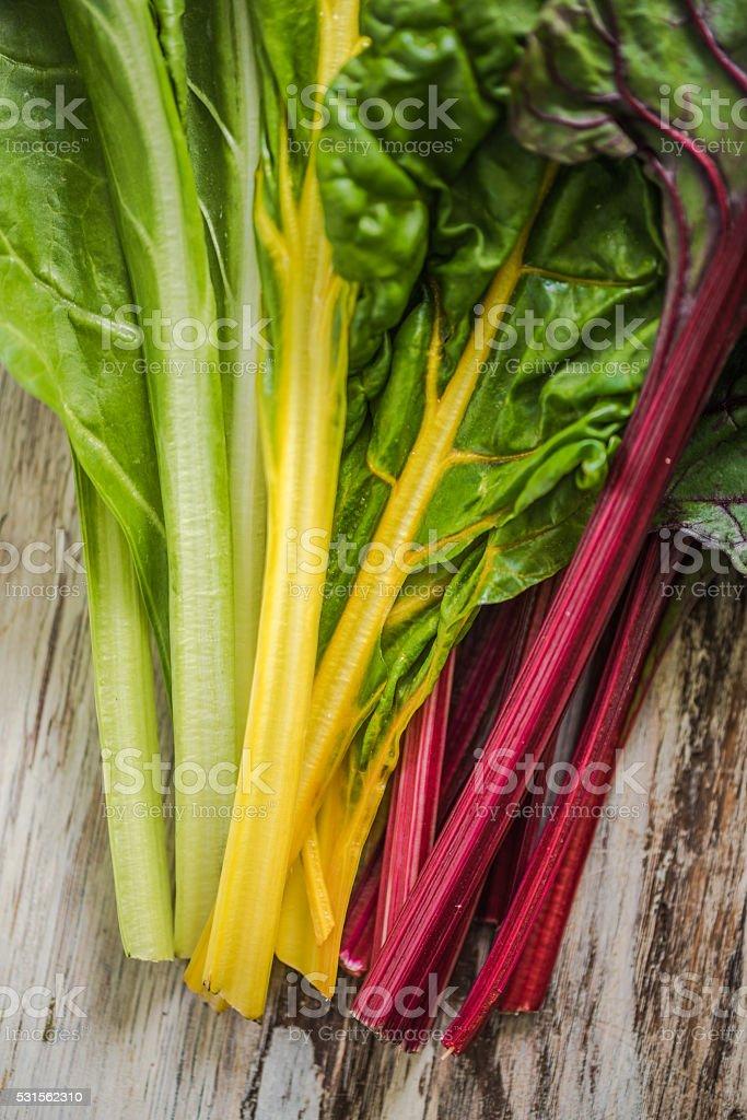 close view on spring rainbow chard stock photo