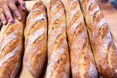 Close  View  Row of Freshly Baked Bread Baguette Loaves
