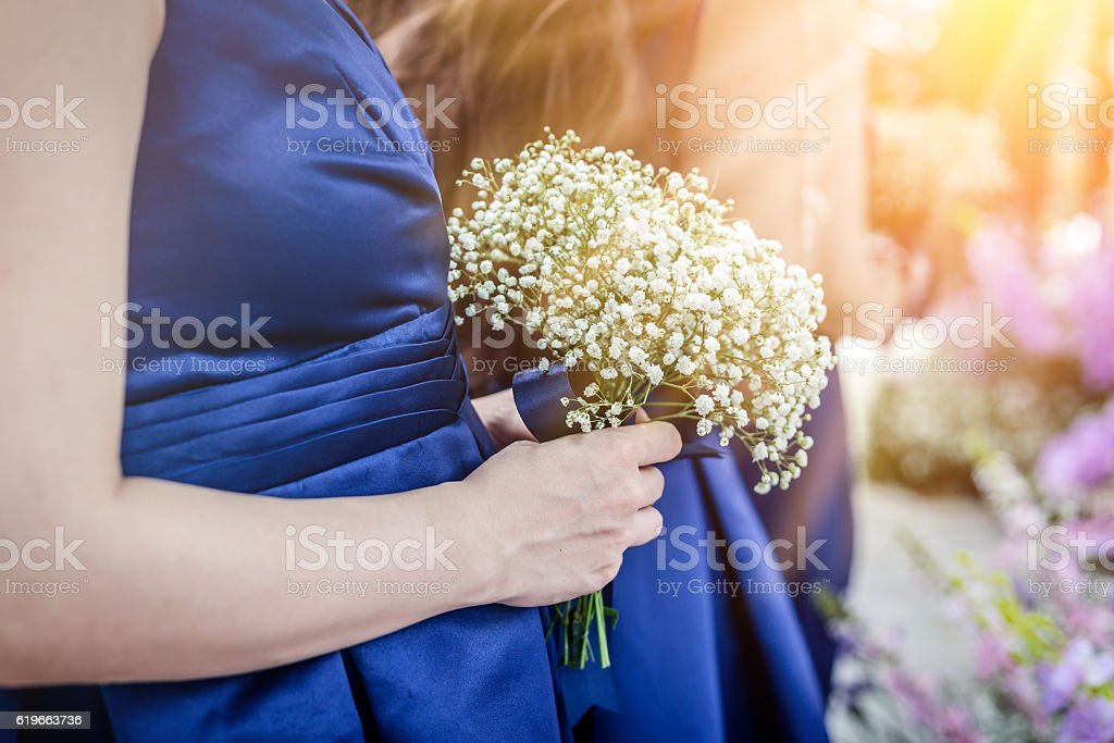 closed up woman's hand hold tiny beautiful white flower stock photo