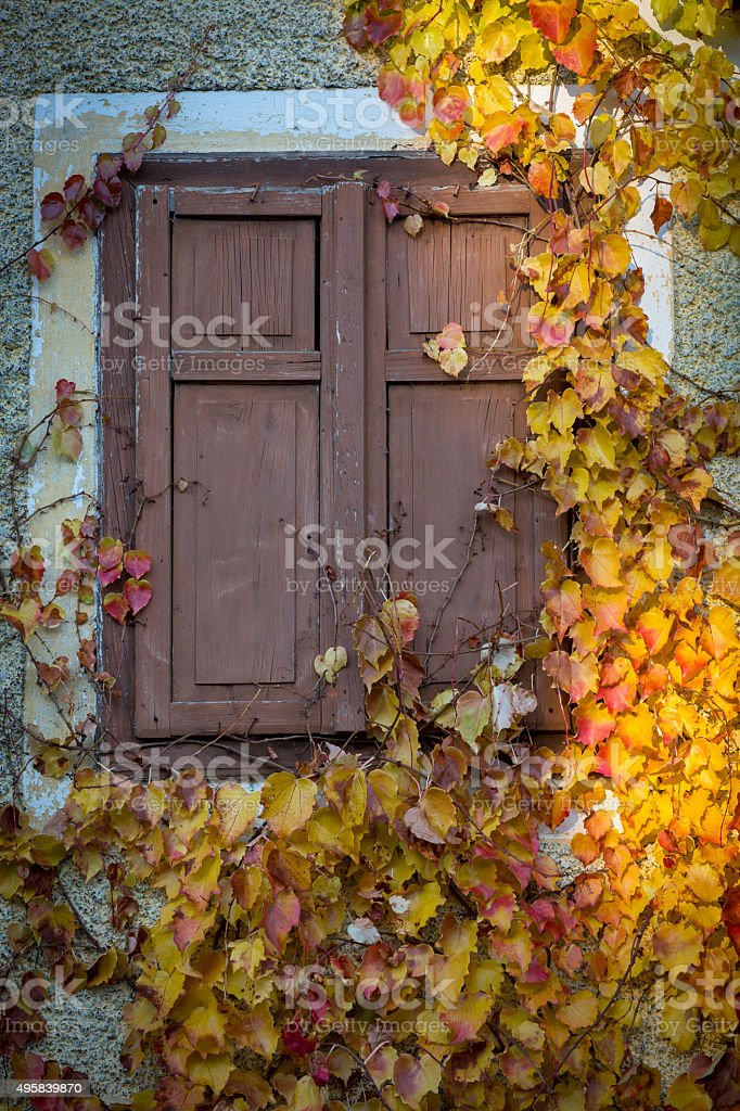closed window in southern styria stock photo