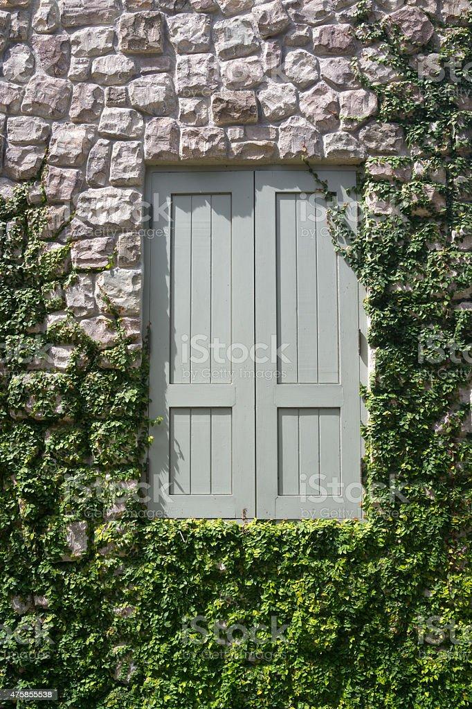 Fermé en bois avec fenêtre sur mur de pierre avec des plantes et vert photo libre de droits