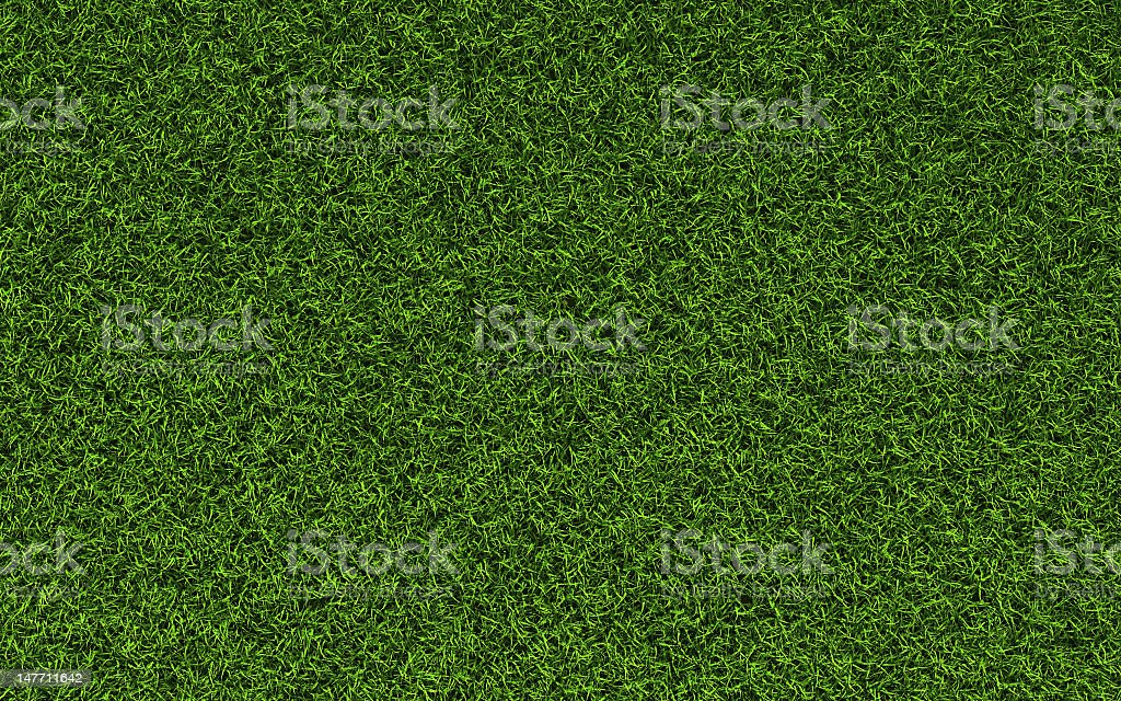 Closely zoomed picture of a patch of grass royalty-free stock photo