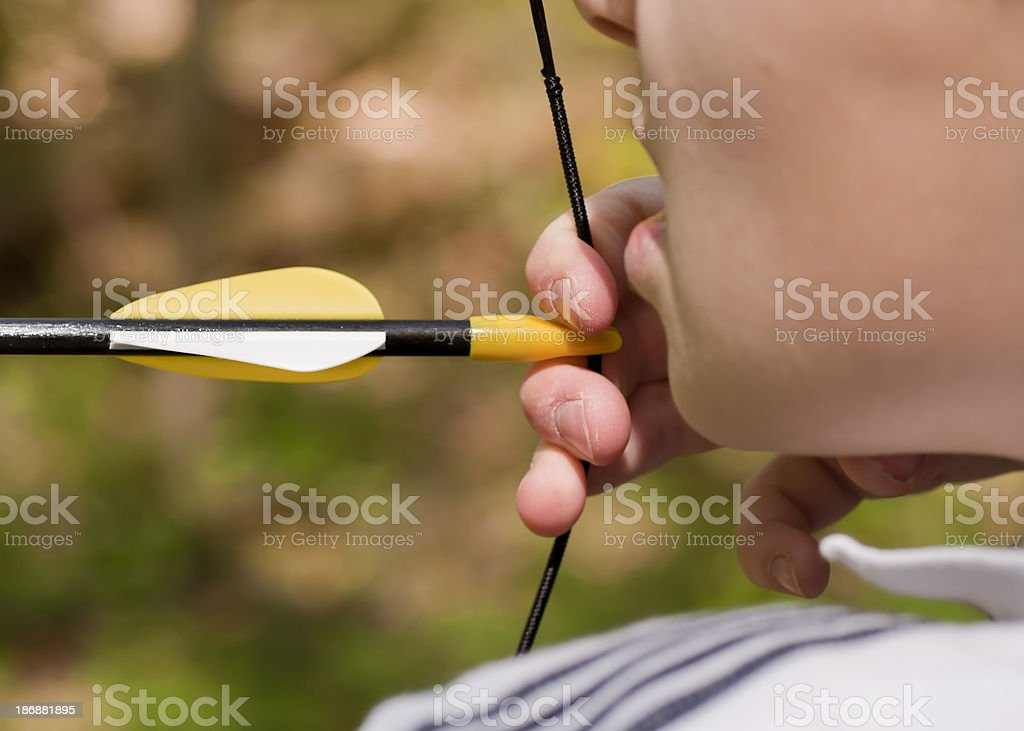 Close-up Archery Practice royalty-free stock photo