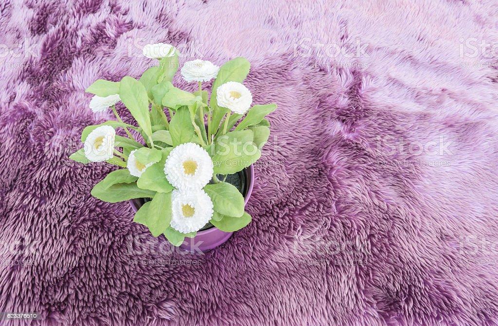 Closeup artificial plant on purple pot on purple carpet stock photo