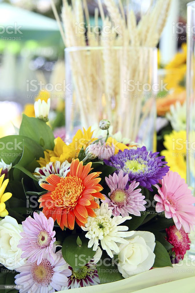 Closeup. Background from different flowers. royalty-free stock photo