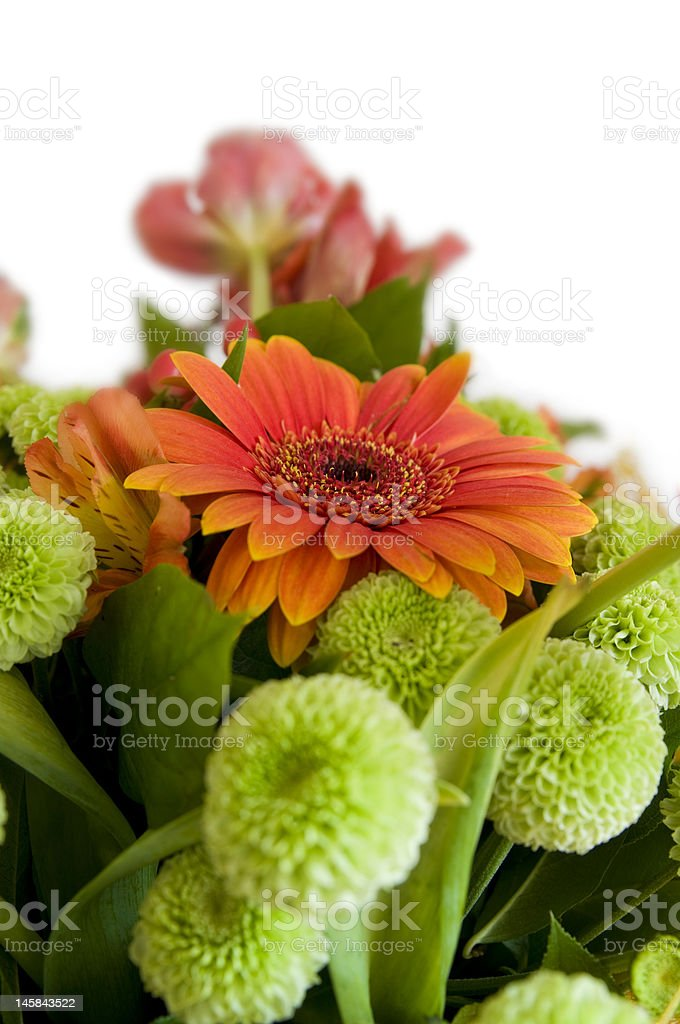 Close-up bouquet of flowers isolated royalty-free stock photo