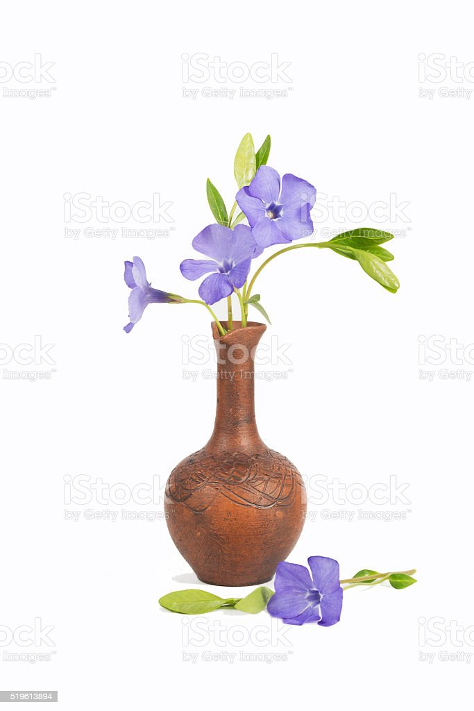 closeup bouquet of purple flowers in the clay jug stock photo