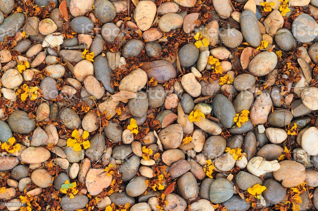 Closeup dirty stone floor with dried leaves texture background stock photo