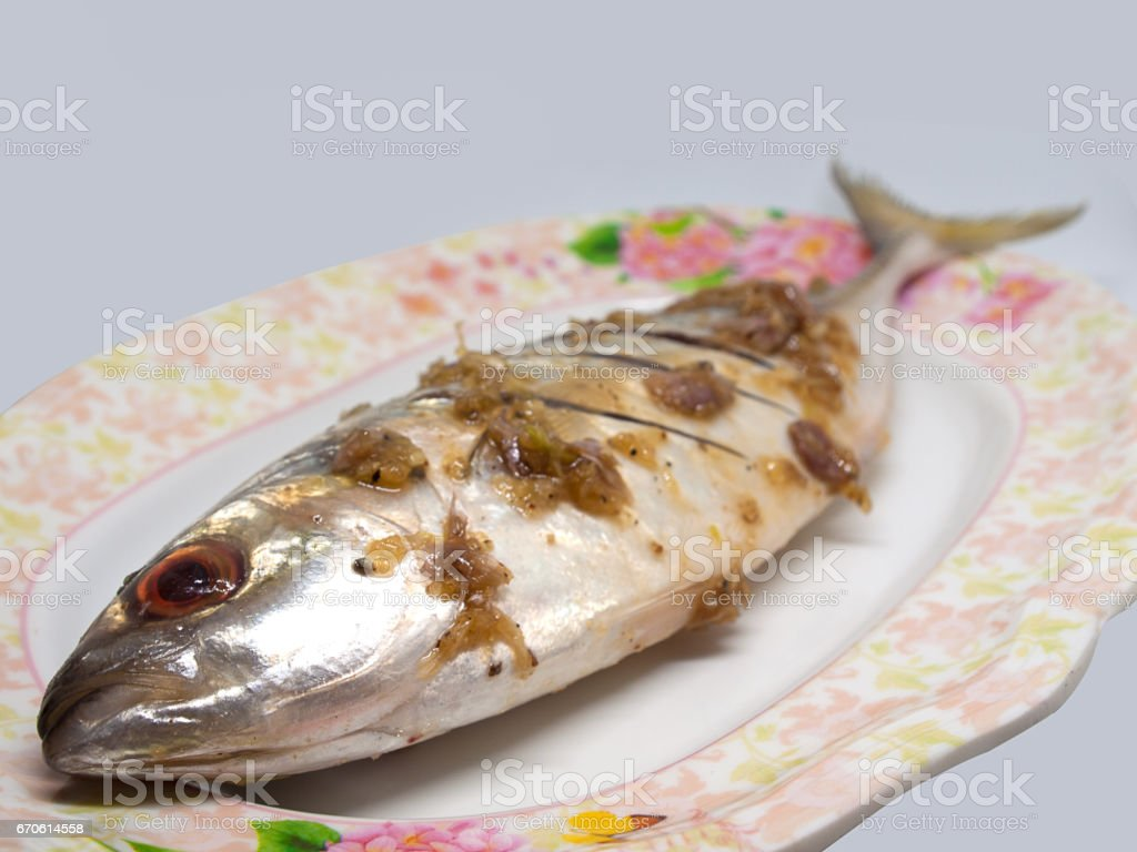 Closeup Fresh atlantic mackerel stock photo