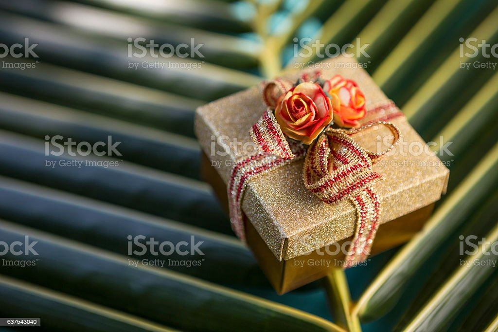 Closeup gold color gift box on fresh coconut leaf stock photo