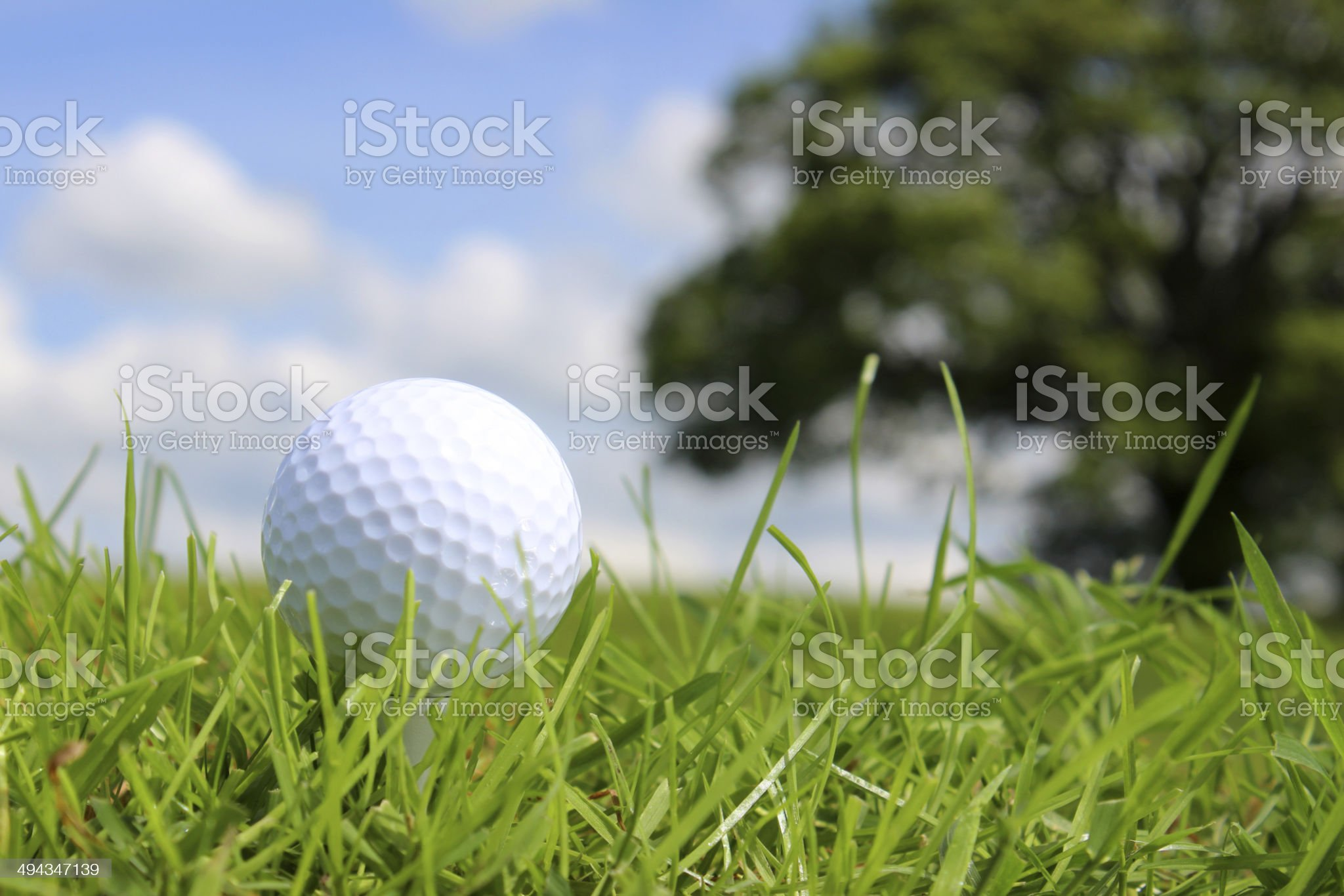Close-up golf ball in grass on golf course, blue sky royalty-free stock photo