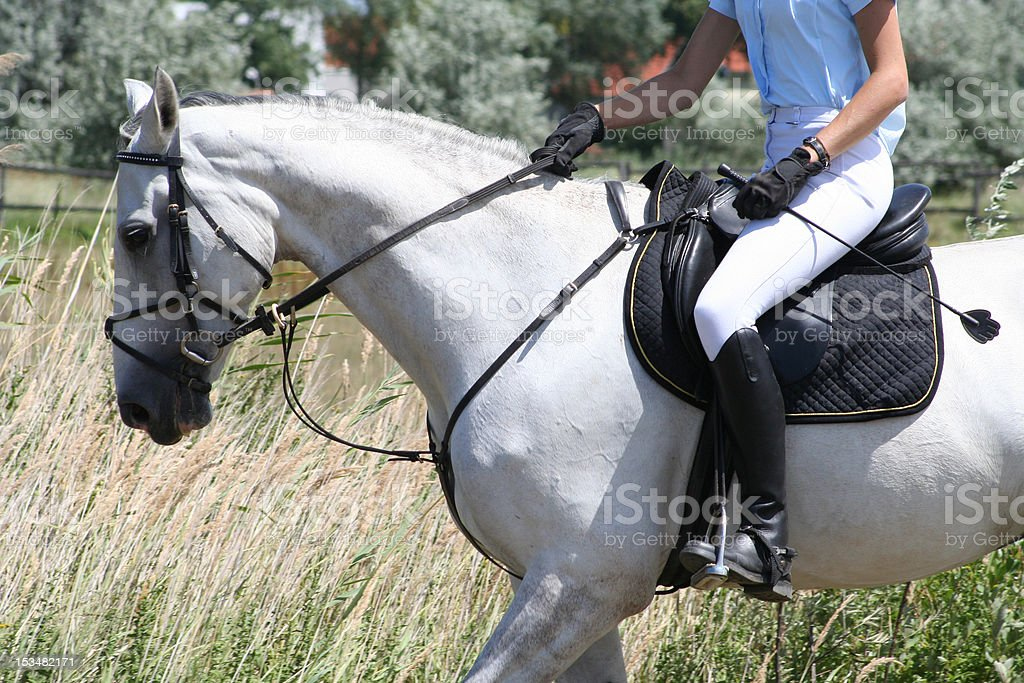 Close-Up: Horseback Riding on a Foaled Horse stock photo