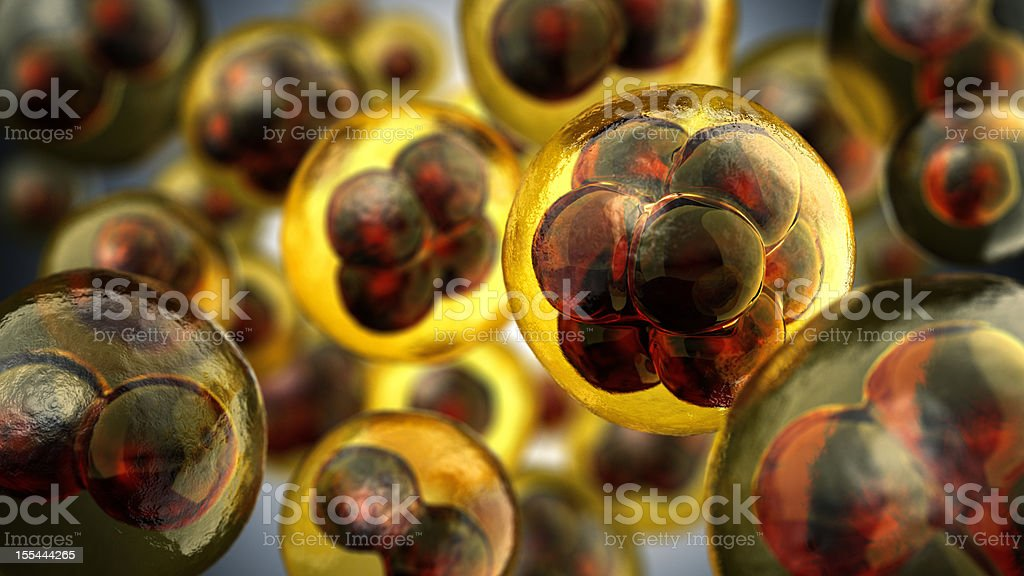Close-up illustration of cell divisions stock photo
