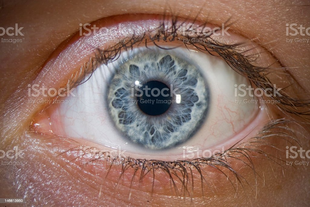Close-up image of light blue eye and eyelashes stock photo