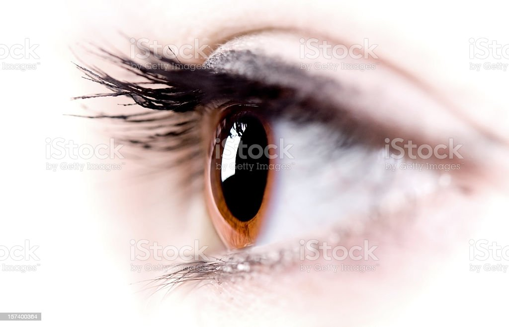 Close-up image of side view of brown eye and eyelashes royalty-free stock photo