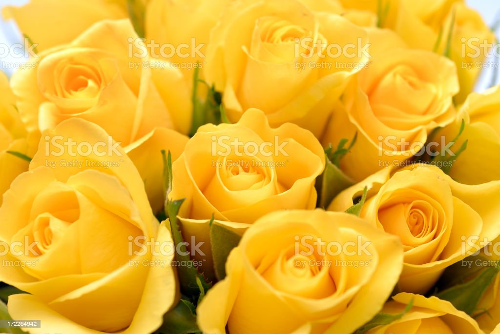 Close-up image of yellow rose bouquet stock photo
