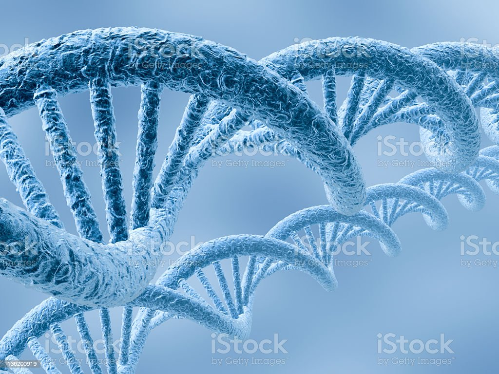 Closeup montage of two blue DNA strands stock photo