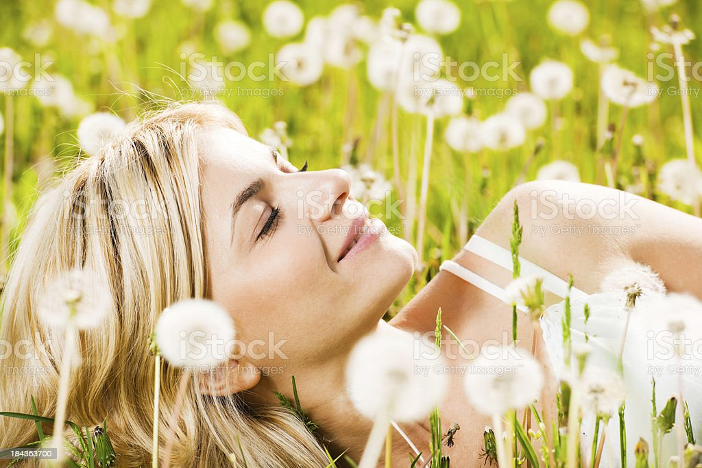 Close-up of a beautiful young woman among dandelions. royalty-free stock photo