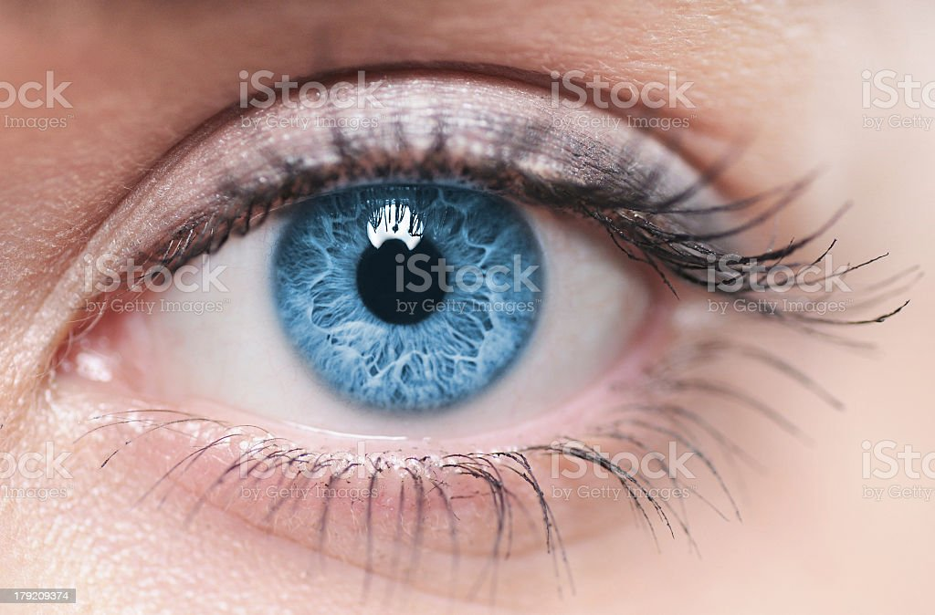 A close-up of a blue female human eye stock photo