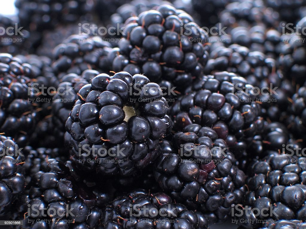 Closeup of a bunch of blackberries stock photo
