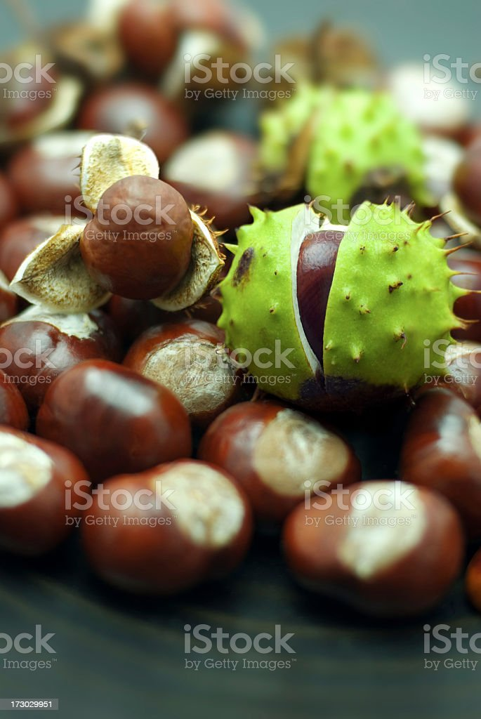 A close-up of a bunch of chestnuts stock photo