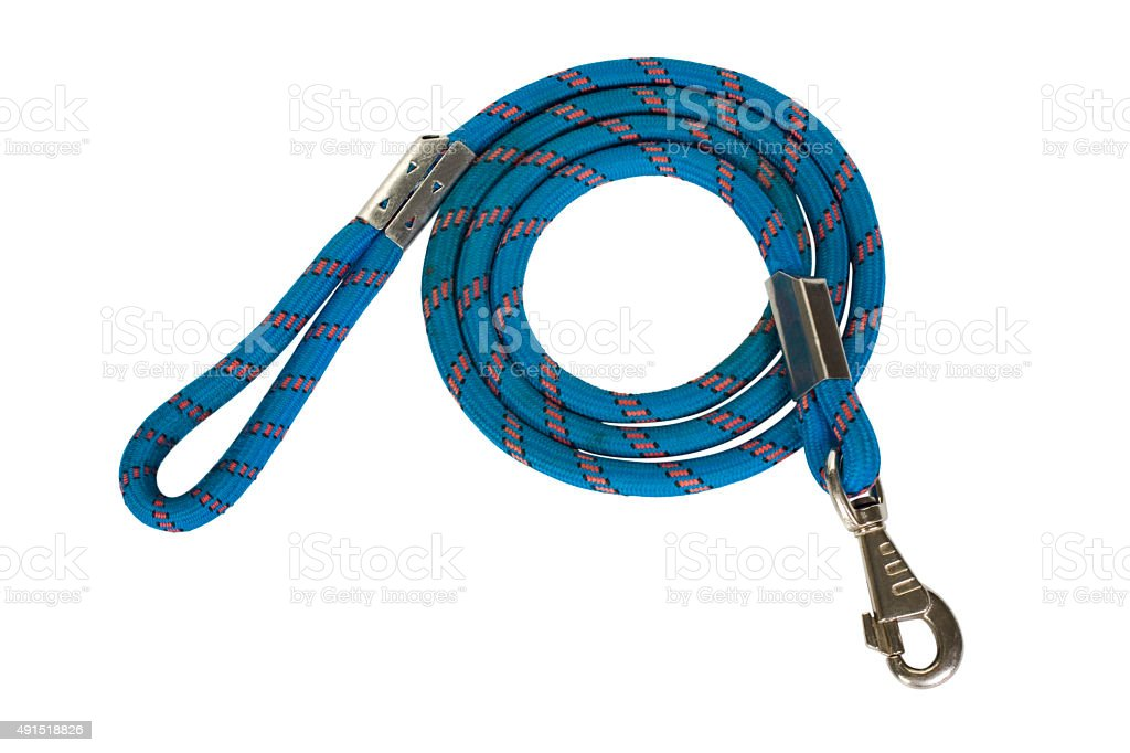 Close-up of a dog leash stock photo