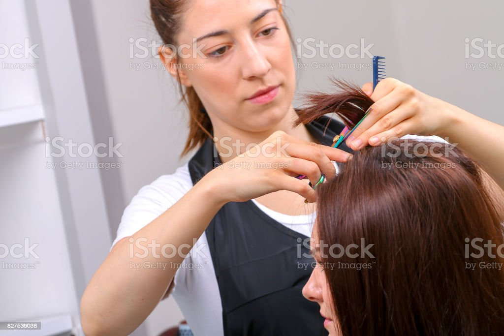Close-up of a hairdresser cutting the hair of a woman in a beauty salon stock photo